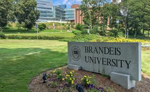 The Brandeis Boxes
